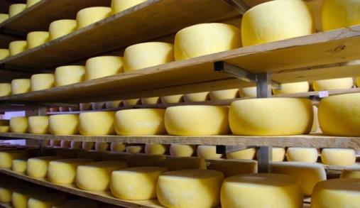 ANIL elege melhores queijos