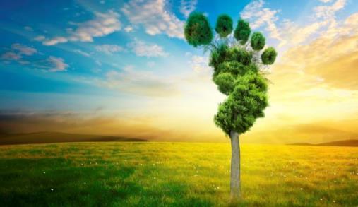 Aprender a pegada ambiental