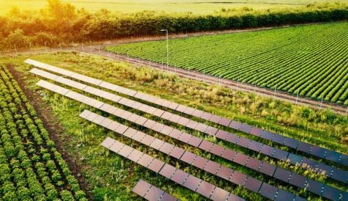 Agronegócios e Sustentabilidade