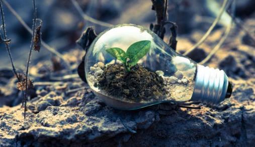 Estratégia Biodiversidade 2030