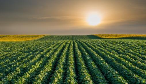 Política Agrícola Comum com acordo