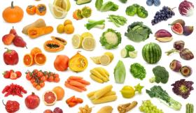 Novos Alimentos no mercado UE